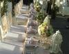 wedding-klapa6
